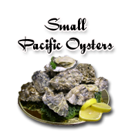 Pacific Oysters in a Shell